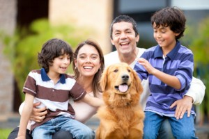 Make Dental Care a Family Affair