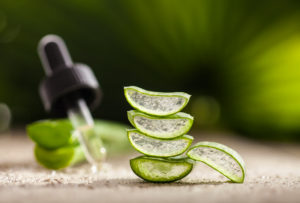 Could Aloe Vera Be the Answer to the Sores in Your Mouth?